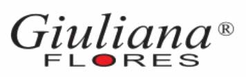 logo Giuliana Flores vasado - Consultoria E-commerce